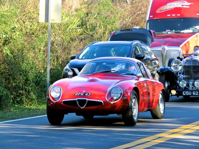Alfa Romeo TZ Spotted on Amelia Island